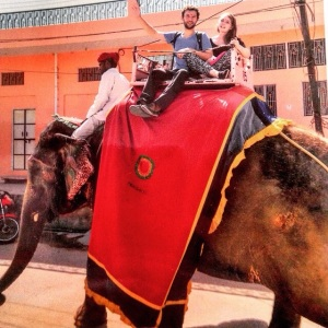 Jaipur Elephant Ride