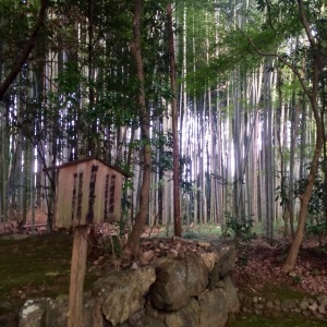 Kyoto Jizo-in Temple
