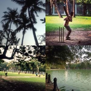 Kolkata Rabindra Sarovar Park