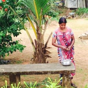 Kerala Backwater Fresh Prawns