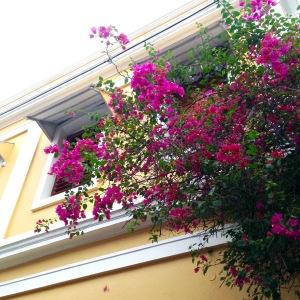 Pondicherry House