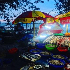 Kerala Fort Cochin Fish Stall
