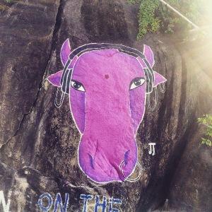 Palolem Silent Disco Cow