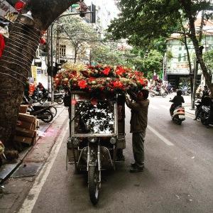 Hanoi Christmas Tuk Tuk